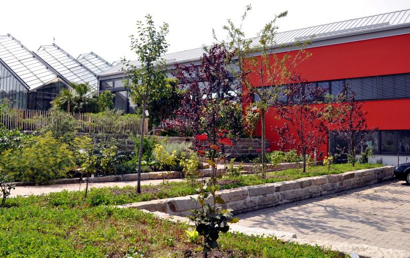 Garten Osnabrück bohnenk haus im botanischen garten universität osnabrück